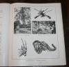 Gautier - 18 000 kilomètres à travers l Afrique en 1937 - 1942 - EO - Photo 0 - livre du XXe siècle