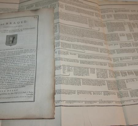 [Noblesse Paris] Hozier - Généalogie de Braque - 1762 - Photo 2, livre ancien du XVIIIe siècle