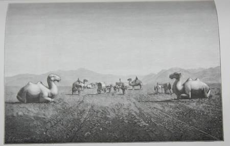Beauvoir Voyage Australie, Java, Siam, Canton, Pékin, Yeddo, San Francisco 1873 - Photo 0 - livre d'occasion