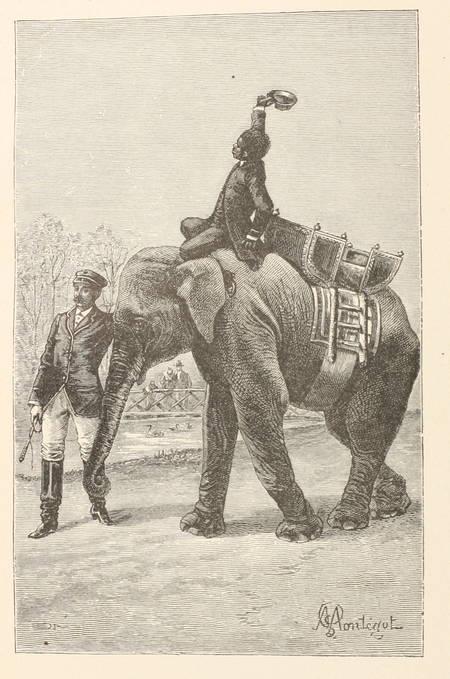DAUDET - Jack - 1885 - 2 volumes reliés - 1ere edidtion illustrée - Montégut ill - Photo 1 - livre rare