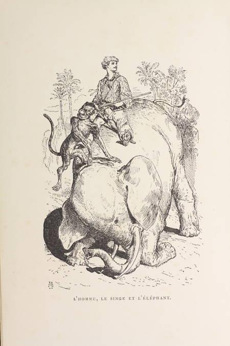 Lapointe - Les déserts africains. Aventures extraordinaires  - 1878 - Illustr. - Photo 1, livre rare du XIXe siècle