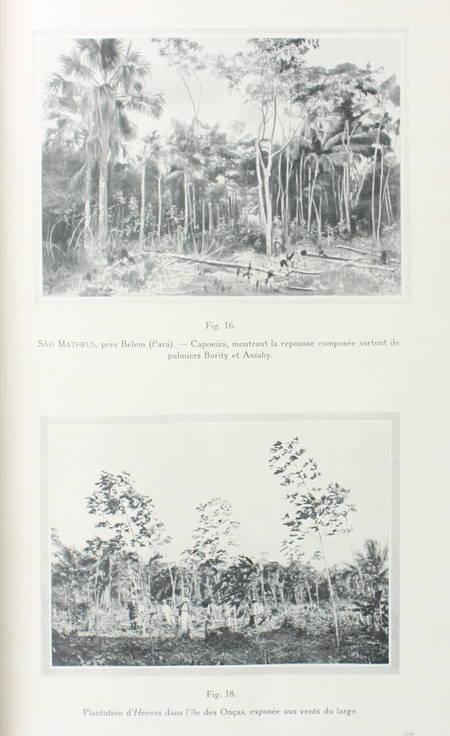 LABROY - Culture et exploitation du caoutchouc au Brésil - Rapport - 1913 - Photo 1 - livre du XXe siècle