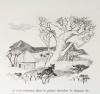 DEMAISON Bêtes sur la terre et dans le ciel 1961 - CAMI - signé Houphouët-Boigny - Photo 3 - livre du XXe siècle