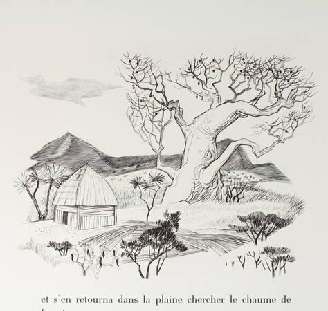 DEMAISON Bêtes sur la terre et dans le ciel 1961 - CAMI - signé Houphouët-Boigny - Photo 3 - livre rare