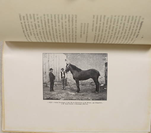 DAMAS d'ANLEZY - En Nivernais - Saint-Benin-d'Azy - (1910) - Photo 0, livre rare du XXe siècle