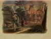 Voyages autour du Monde et naufrages célèbres 1843 - Planches couleurs - 8 v - Photo 5, livre rare du XIXe siècle
