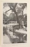 LOISEL - Rapport sur une mission scientifique dans les jardins zoologiques 1907 - Photo 0 - livre du XXe siècle