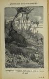 REVOIL - Aventures extraordinaires sur terre et sur mer - (Vers 1885) - Photo 0 - livre d occasion