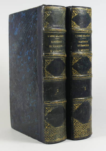 Granget - Histoire du diocèse d'Avignon et des anciens diocèses 1862 - 2 volumes - Photo 0, livre rare du XIXe siècle