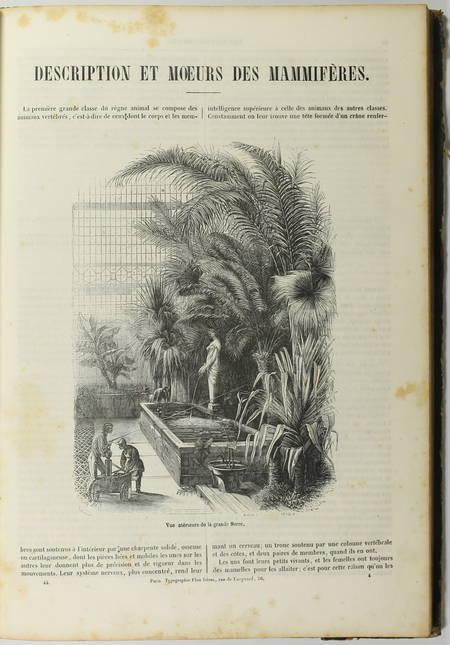 BOITARD - Le jardin des plantes - Mammifères - Barba (1851) - Gravures - Photo 4, livre rare du XIXe siècle