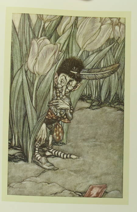 BARRIE - Piter Pan dans les jardins de Kensington - Arthur Rackham (1907) - Photo 3 - livre moderne