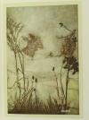 BARRIE - Piter Pan dans les jardins de Kensington - Arthur Rackham (1907) - Photo 5 - livre rare