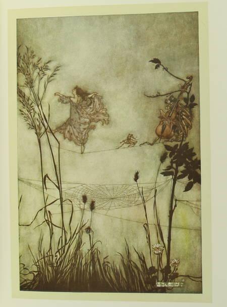 BARRIE - Piter Pan dans les jardins de Kensington - Arthur Rackham (1907) - Photo 5 - livre moderne