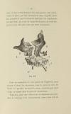 [Dentisterie] MARTIN - Prothèse immédiate, résection des maxillaires - 1889 - Photo 1 - livre d occasion