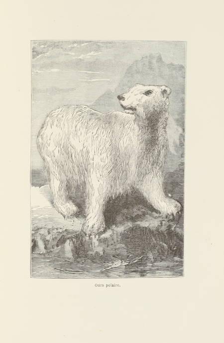 HAYES (I. J.). La terre de désolation, excursion d'été au Groënland, livre rare du XIXe siècle
