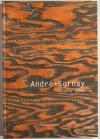 [Mobilier Design] ROCHE - André Sornay 1902-2000 - 2002 - Photo 0 - livre moderne