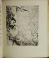 FLAUBERT - Salammbô - 1924 - 30 eaux-fortes de Fritz Heubner - Photo 1, livre rare du XXe siècle