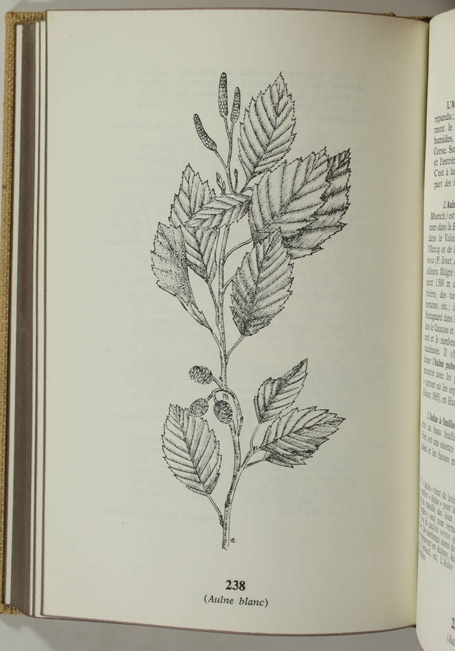 LIEUTAGHI - Le livre des arbres, arbustes et arbrisseaux - 1969 - 2 volumes - Photo 1 - livre d occasion