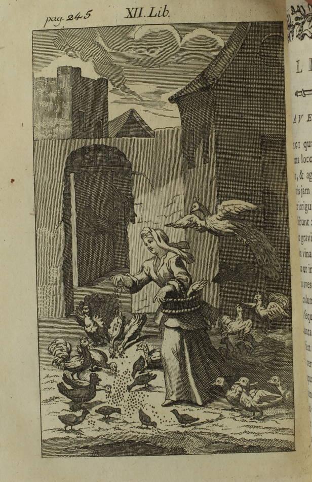 VANIERE - Praedium rusticum - 1750 - 17 gravures - Photo 3, livre ancien du XVIIIe siècle