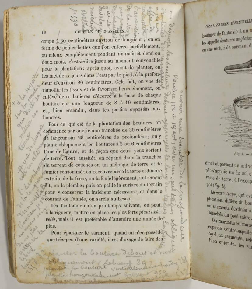 [Oenologie] CHARMEUX - Culture du chasselas à Thomery - (1863) - Photo 3, livre rare du XIXe siècle