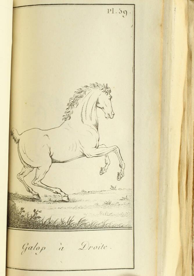 Exercice et manoeuvre de la cavalerie - 128 planches - Magimel, 1813 - Photo 0, livre ancien du XIXe siècle