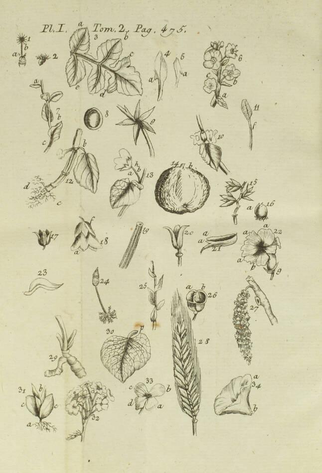 [Botanique] GILIBERT Histoire des plantes d Europe 1798 - 2 vols - 810 figures.. - Photo 0, livre ancien du XVIIIe siècle