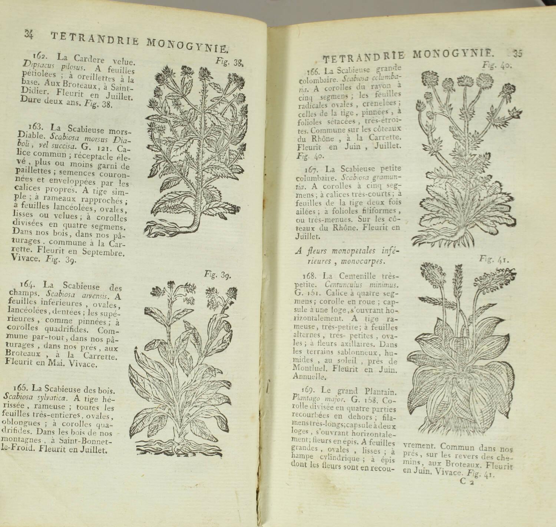 [Botanique] GILIBERT Histoire des plantes d Europe 1798 - 2 vols - 810 figures.. - Photo 5, livre ancien du XVIIIe siècle