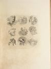 GONSE - L art japonais - 1883 - 2 volumes - Cartonnages de Engel - Photo 9, livre rare du XIXe siècle