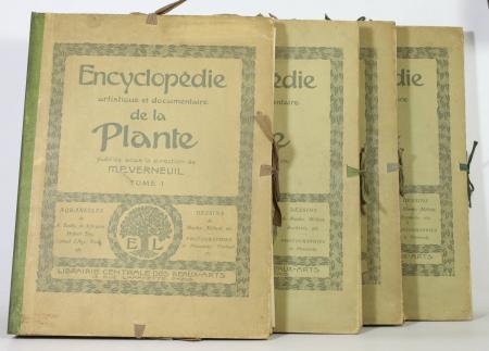VERNEUIL (M. P., sous la direction de). Encyclopédie artistique et documentaire de la plante, livre rare du XXe siècle