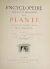 Encyclopédie artistique de la plante - 1904 - 384 planches - Mucha Meheut ... - Photo 2, livre rare du XXe siècle