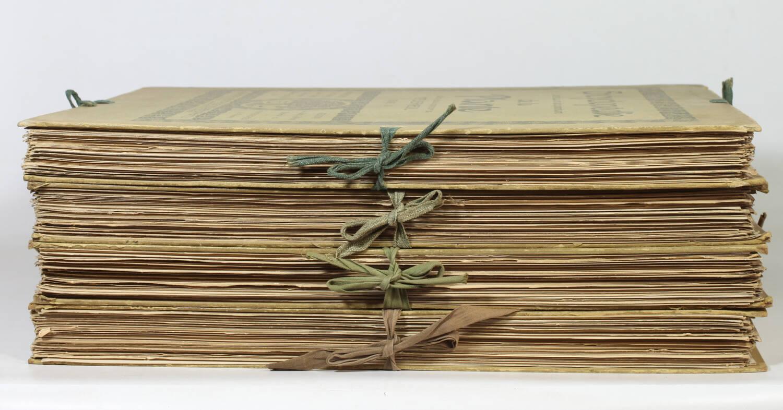 Encyclopédie artistique de la plante - 1904 - 384 planches - Mucha Meheut ... - Photo 5, livre rare du XXe siècle