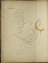 TIEDEMANN - Tabulae arteriarum - 1822 - In plano - Planches - Lithographies - Photo 16, livre rare du XIXe siècle