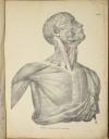 TIEDEMANN - Tabulae arteriarum - 1822 - In plano - Planches - Lithographies - Photo 6, livre rare du XIXe siècle