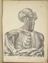TIEDEMANN - Tabulae arteriarum - 1822 - In plano - Planches - Lithographies - Photo 8, livre rare du XIXe siècle