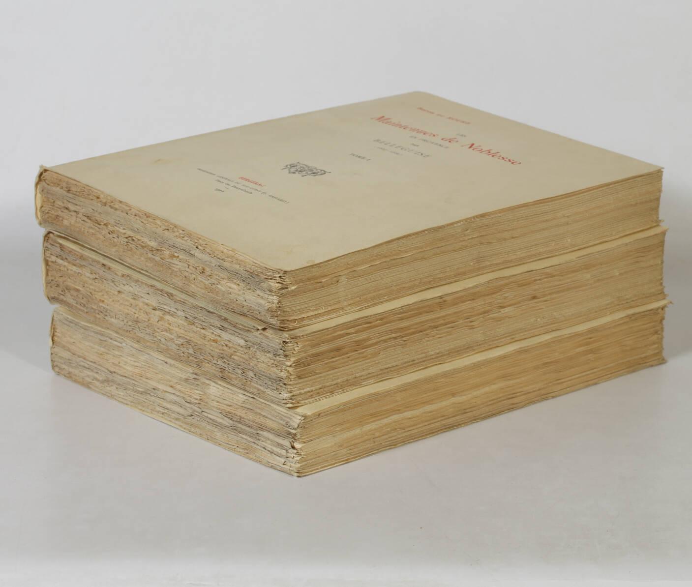 ROURE - Maintenues de noblesse en Provence par Belleguise (1667-1669) 3 vols - Photo 2, livre rare du XXe siècle