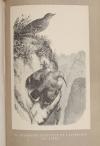 TSCHUDI - Le monde des Alpes - Description pittoresque -1870 - Gravures - Photo 4, livre rare du XIXe siècle