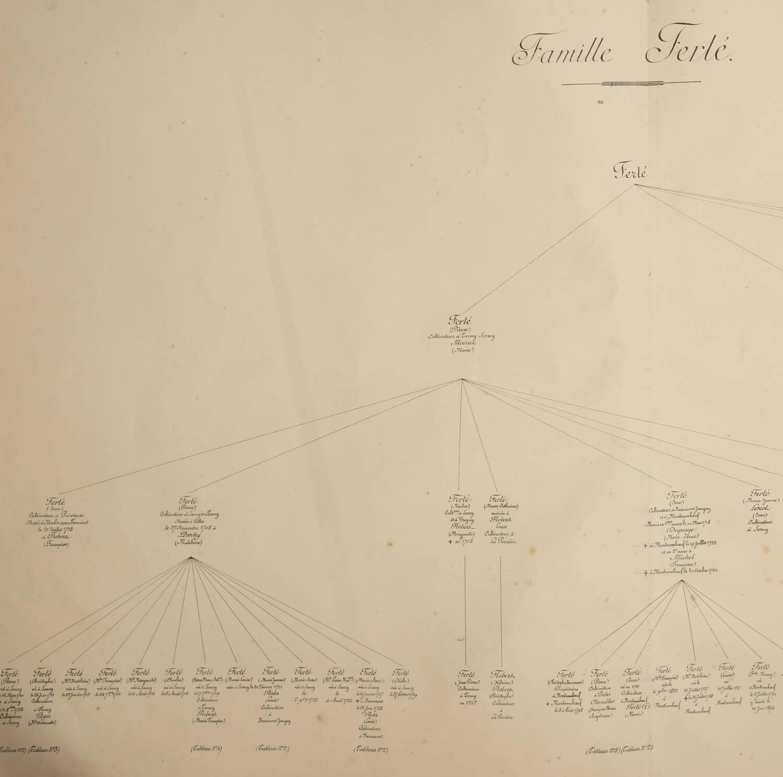 [Picardie] Généalogie de la famille Ferté - (Vers 1896-1900) - Aisne - Photo 1, livre rare du XIXe siècle